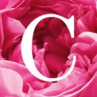 能給你最天然奢華的體驗--CHANTECAILLE皇牌花妍面膜 - CHANTECAILLE       5jpg - 能給你最天然奢華的體驗–CHANTECAILLE皇牌花妍面膜