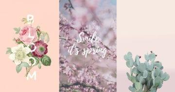春天迎來新氣息,來為手機換張充滿春日生氣的桌布吧!